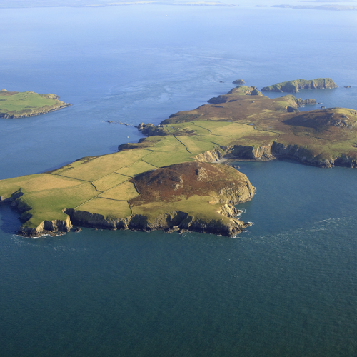 Ramsey Island from the air, Pembrokeshire boat trips
